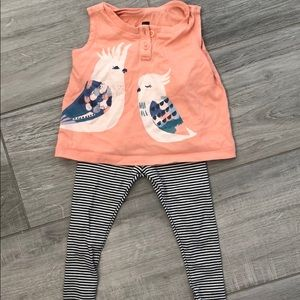 Tea collection shirt and leggings 9-12 months